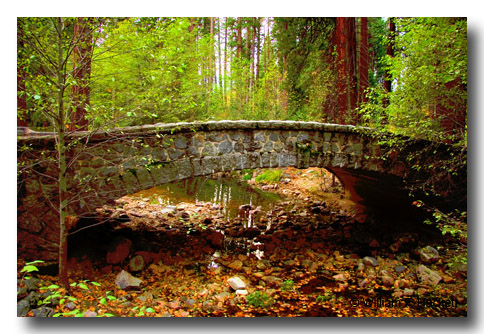 Stone Bridge, Yosemite, November