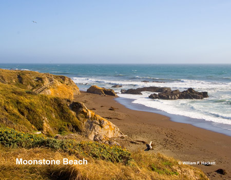 Moonstone Beach, Cambria, California