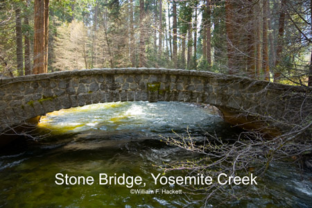 Stone Bridge, Yosemite Creek in April, Yosemite National Park, California
