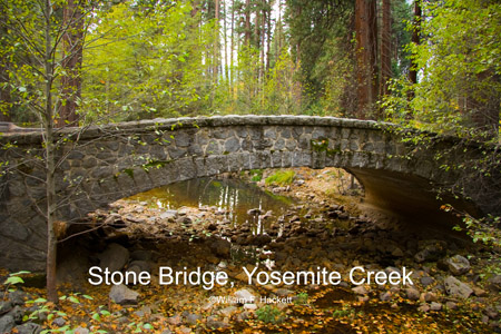 Stone Bridge, Yosemite Creek, November