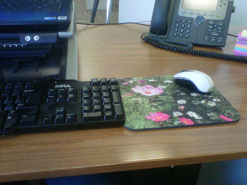 "Cheshire Cat Photo mousepad of ""Uplifting"" in South Africa"