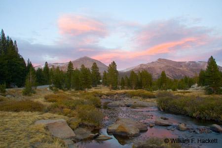 Dana Meadows, Yosemite National Park