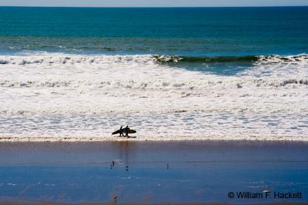 Manresa State Beach Surfers
