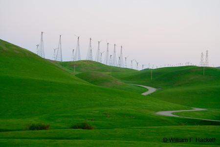 Patterson Pass Road Windmills green