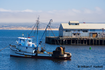San Giovanni, Monterey