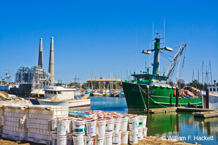 Harbor, Moss Landing, California