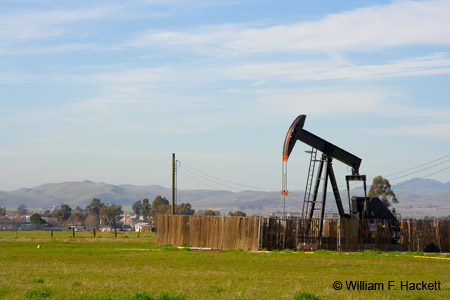 Livermore Oil Well