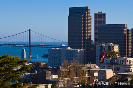 San Francisco Skyline 1264