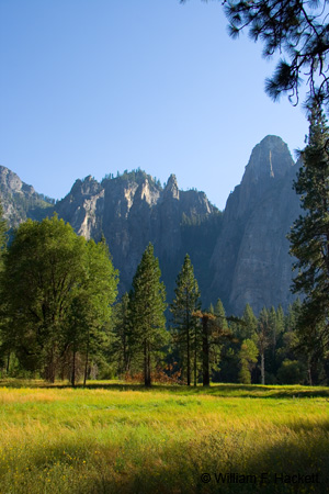 El Capitan Meadow, Yosemite